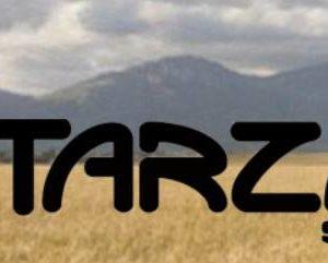 Tarzan Shoes Logo